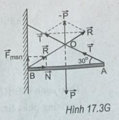 hình bài 17.3 trang 41