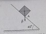 hình bài 20.2 trang 47