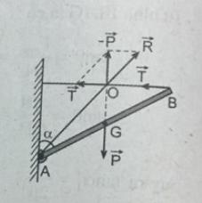 hình III.5 trang 52