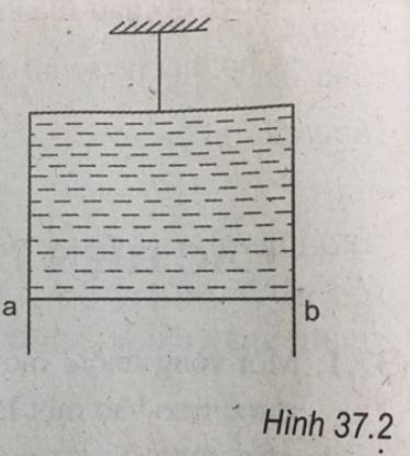 hình 37.5 bài 37 trang 90