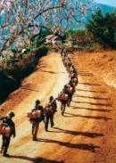 Cảm nhận về tâm trạng của tác giả khi nhớ về miền Tây Bắc Bộ và những người đồng đội của mình trong đoạn thơ: Sông Mã xa rồi Tây Tiến ơi…Mai Châu mùa em thơm nếp xôi