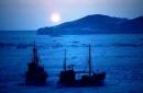 Đoàn thuyền đánh cá trên biển trong đêm trăng trong Đoàn thuyền đánh cá của Huy Cận