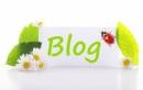 Viết một bài văn nghị luận nêu suy nghĩ của em về lợi và hại về hiện tượng sử dụng blog trong giới trẻ hiện nay.