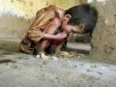 Bạn có ý kiến gì trước cái đói nghèo và những cuộc đời bất hạnh vẫn còn trong xã hội nước ta - Ngữ Văn 12