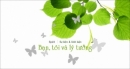 """Nhà văn Nga L. Tôn-xtôi nói: """"Lí tưởng là ngọn đèn ... không có cuộc sống """". Hãy nêu suy nghĩ về vai trò của lí tưởng trong cuộc sống con người - Ngữ Văn 12"""