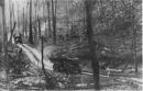 Phân tích hình ảnh những người chiến sĩ lái xe trong Bài thơ về tiểu đội xe không kính của nhà thơ Phạm Tiến Duật
