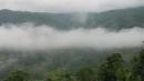"""Hãy bình giảng đoạn thơ sau đây trong bài Tiếng hát con tàu của Chế Lan Viên: """"Nhớ bản sương giăng, nhớ đèo mây phủ...Tình yêu làm đất lạ hóa quê hương"""""""