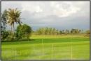 Giới thiệu một vùng quê đẹp:  Bạc Liêu một vùng quê đáng yêu và đáng nhớ.