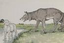 Cảm nhận về bài Chó sói và cừu trong thơ ngụ ngôn của La-phong- ten.