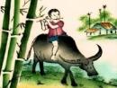 Con trâu ở làng quê Việt Nam ( Bài 5 )