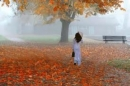 Phân tích bài thơ Đây mùa thu tới của thi sĩ Xuân Diệu.