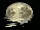 Ánh trăng của Nguyễn Duy gợi cho em những cảm nghĩ gì?