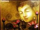 """Suy nghĩ của bạn về lời dạy của Đức Phật: """"Giọt nước chỉ hòa vào biển cả mới không cạn mà thôi"""" - Ngữ Văn 12"""