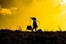 Hình tượng người phụ nữ Việt Nam trong xã hội cũ qua Tự Tình II và Thương vợ