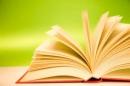 Luyện tập làm bài văn nghị luận về tác phẩm truyện (hoặc đoạn trích)
