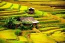 Phân tích bài thơ Đất Nước - Nguyễn Khoa Điềm