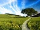 Em hãy tả một ngày đẹp trời ở quê mình