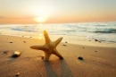 Tả cảnh biển buổi sáng