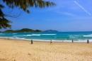 Tả bãi biển