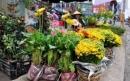 Tả quang cảnh một phiên chợ Tết