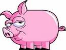 Tả con lợn