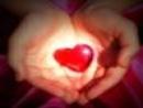 Hãy kể lại một câu chuyện thể hiện tấm lòng nhân ái, yêu thương, đùm bọc lẫn nhau giữa con người với con người trong cuộc sống
