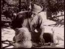 Nếu là người đọc chứng kiến cảnh lão Hạc kể chuyện bán chó với ông giáo trong truyện ngắn của Nam Cao thì em sẽ ghi lại câu chuyện đó như thế nào?