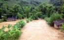 Hãy cho biết thời gian hoạt động và hậu quả của bão ở Việt Nam cùng biện pháp phòng chống