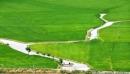 Dựa vào kiến thức đã học, hãy kể tên một số cánh đồng lúa nổi tiếng ở miền núi, trung du Bắc Bộ và Tây Nguyên
