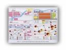 Các hình thức chủ yếu về tổ chức lãnh thổ công nghiệp