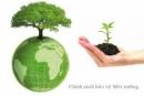 Chứng minh bảo vệ môi trường là bảo vệ cuộc sống của chúng ta
