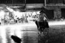 Viết những cảm nghĩ của mình về Sài Gòn mùa mưa