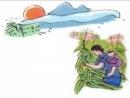 Bình giảng đoạn thơ thứ hai trong bài Khúc hát ru những em bé lớn trên lưng mẹ của Nguyễn Khoa Điềm