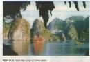 Tài nguyên và bảo vệ môi trường biển Việt Nam
