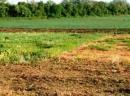 Vấn đề sử dụng và cải tạo đất ở Việt Nam