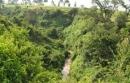 Việt Nam là một nước nhiệt đới gió mùa ẩm