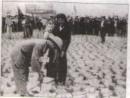 Miền Bắc hoàn thành cải cách ruộng đất, khôi phục kinh tế, cải tạo quan hệ sản xuất (1954 - 1960)