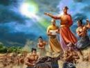 Tổ chức quân đội thời Lê sơ