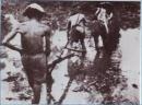 Tình hình Việt Nam trước khi Pháp đánh chiếm Bắc Kì