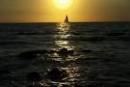 Cảm nhận về nhân vật Phùng trong Chiếc thuyền ngoài xa - Ngữ Văn 12