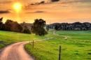 Hai cách kết bài(SGK trang 84) bài văn tả con đường quen thuộc từ nhà đến trường