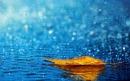 Từ phần dàn ý tả cảnh cơn mưa em hãy viết thành một đoạn văn bài 2 trang 34