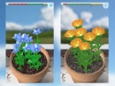 Bài làm 2 - Ở vườn các luống hoa nở bông rất đẹp. Hãy tả một cây bông mà em thích nhất