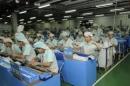 Tả một người lao động (công nhân, nônq dân, thợ thủ công, bác sĩ, y tá, cô giáo, thầy giáo...) đang làm việc.
