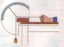 Lý thuyết bài hoạt động của cơ