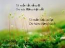 Cảm nhận về bài thơ Vội Vàng của Xuân Diệu - Ngữ Văn 12