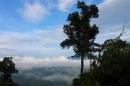 Nỗi nhớ Tây Bắc của Quang Dũng trong bài thơ Tây Tiến