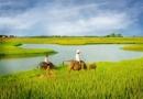 Cảm hứng về đất nước của Nguyễn Khoa Điềm - Ngữ văn 12