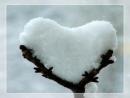 """""""Nơi lạnh lẽo nhất không phải là Bắc Cực mà là nơi không có tình thương"""". Suy nghĩ về bệnh vô cảm trong cuộc sống hiện nay - Ngữ Văn 12"""