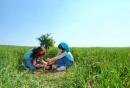 Luận bàn về ý thức trách nhiệm và thói vô cảm - Ngữ Văn 12